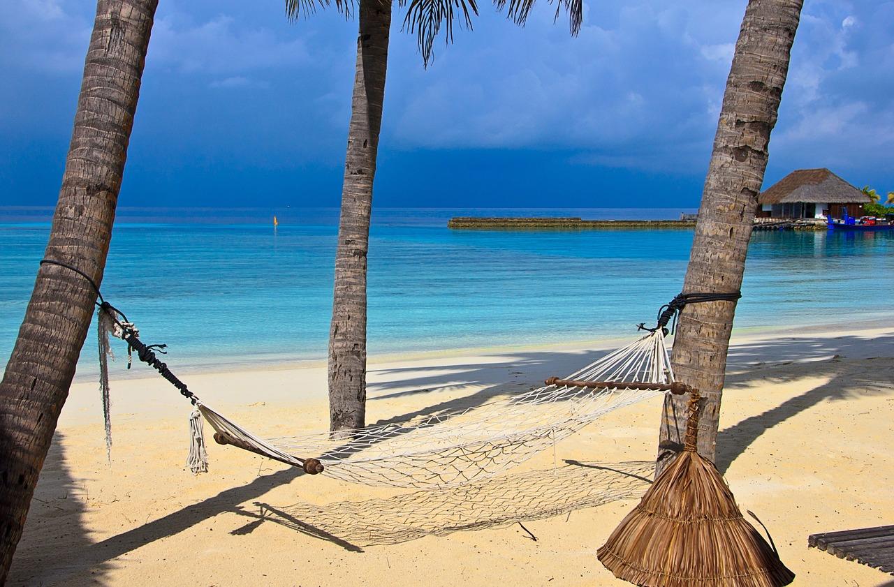 tropical-beach-hammock
