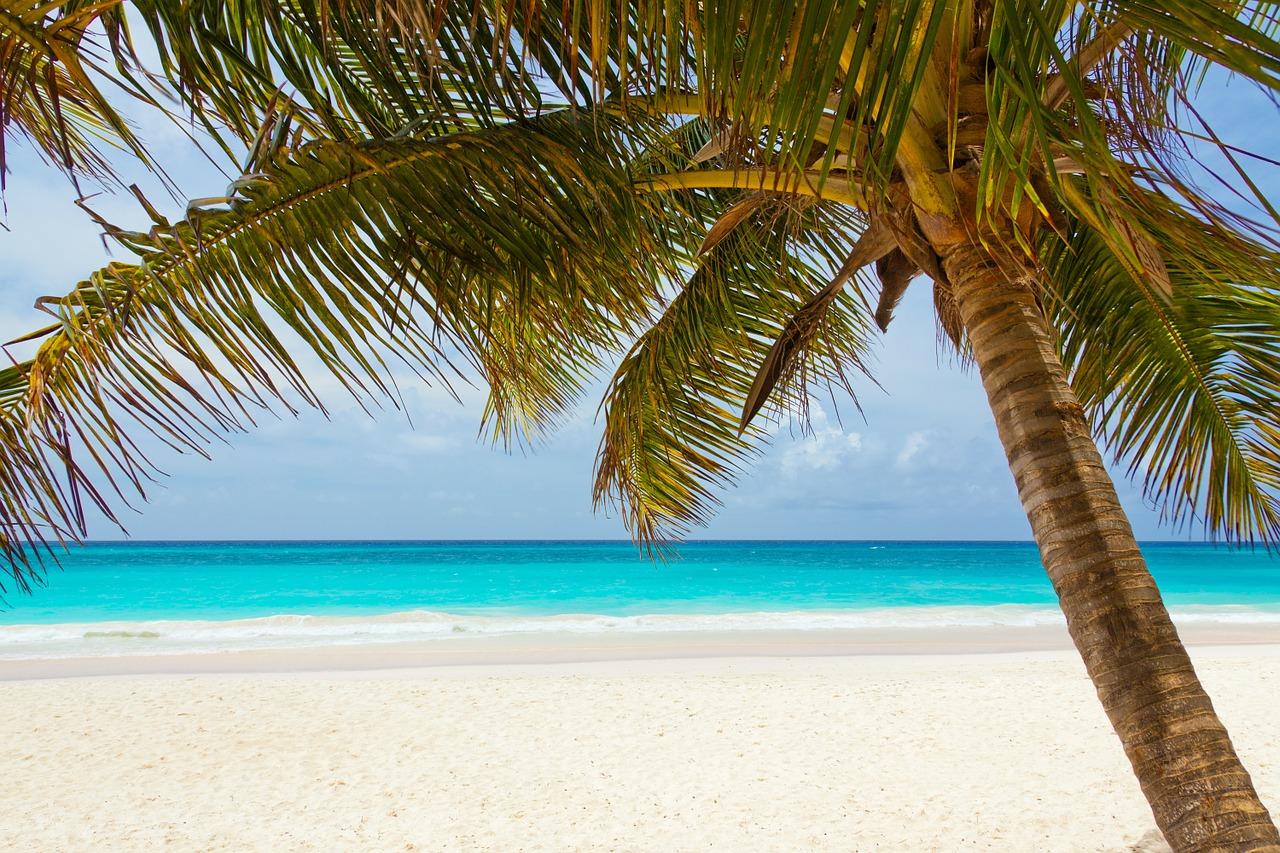 tropical-beach2