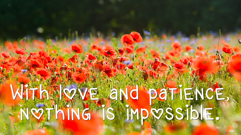 daisaku_ikeda_quote_with_love_and_patience_nothing_is_impossible_5633